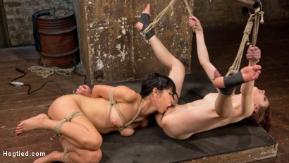 Photo number 14 from 2 Whores in Predicament Bondage, Tormented and Made to Lick Pussy shot for Hogtied on Kink.com. Featuring Anna De Ville, Marica Hase and The Pope in hardcore BDSM & Fetish porn.