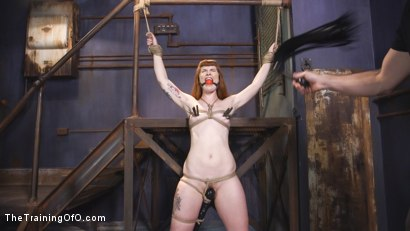 Photo number 2 from Training Barbary Rose: Orgasm Denial shot for thetrainingofo on Kink.com. Featuring Rob Carpenter and Barbary Rose in hardcore BDSM & Fetish porn.