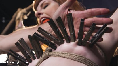 Photo number 4 from Training Barbary Rose: Orgasm Denial shot for thetrainingofo on Kink.com. Featuring Rob Carpenter and Barbary Rose in hardcore BDSM & Fetish porn.