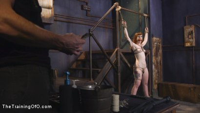 Photo number 1 from Training Barbary Rose: Orgasm Denial shot for The Training Of O on Kink.com. Featuring Rob Carpenter and Barbary Rose in hardcore BDSM & Fetish porn.