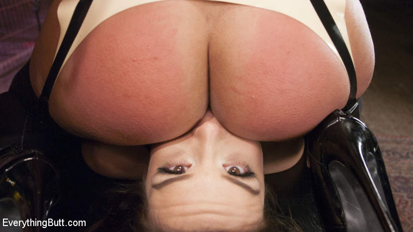 properties x rated upskirt videos assured, that you are