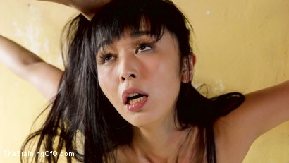 Photo number 10 from Sexy Japanese Marica Hase Trained for Deep Anal Submission shot for The Training Of O on Kink.com. Featuring Marica Hase and Axel Aces in hardcore BDSM & Fetish porn.