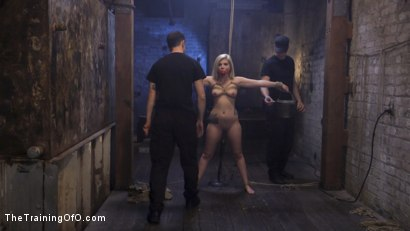 Photo number 1 from Slave Training Rikki Rumor shot for The Training Of O on Kink.com. Featuring Rikki Rumor and Maestro in hardcore BDSM & Fetish porn.