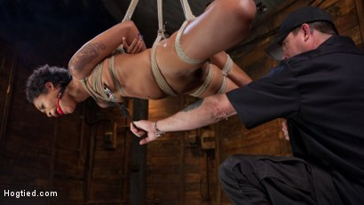 Photo number 12 from Skin Diamond is Tormented in Brutal Bondage and Made to Cum shot for Hogtied on Kink.com. Featuring Skin Diamond and The Pope in hardcore BDSM & Fetish porn.