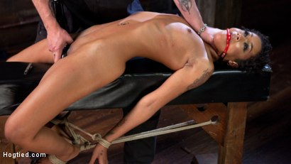 Photo number 5 from Skin Diamond is Tormented in Brutal Bondage and Made to Cum shot for Hogtied on Kink.com. Featuring Skin Diamond and The Pope in hardcore BDSM & Fetish porn.