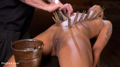 Photo number 13 from Skin Diamond is Tormented in Brutal Bondage and Made to Cum shot for Hogtied on Kink.com. Featuring Skin Diamond and The Pope in hardcore BDSM & Fetish porn.