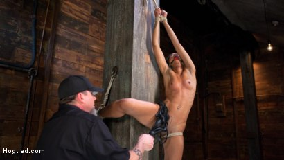 Photo number 3 from Skin Diamond is Tormented in Brutal Bondage and Made to Cum shot for Hogtied on Kink.com. Featuring Skin Diamond and The Pope in hardcore BDSM & Fetish porn.