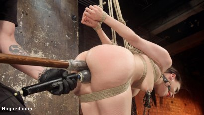Photo number 3 from Petite Bondage Slut Gets her Holes Destroyed in Grueling Bondage shot for Hogtied on Kink.com. Featuring Gabriella Paltrova and The Pope in hardcore BDSM & Fetish porn.