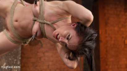 Photo number 8 from Petite Bondage Slut Gets her Holes Destroyed in Grueling Bondage shot for Hogtied on Kink.com. Featuring Gabriella Paltrova and The Pope in hardcore BDSM & Fetish porn.