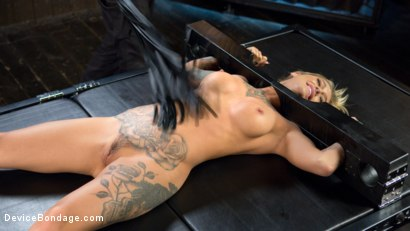 Photo number 6 from Super Sexy ALT Pain Slut Captured in Brutal Bondage and Tormented shot for Device Bondage on Kink.com. Featuring Kleio Valentien and The Pope in hardcore BDSM & Fetish porn.