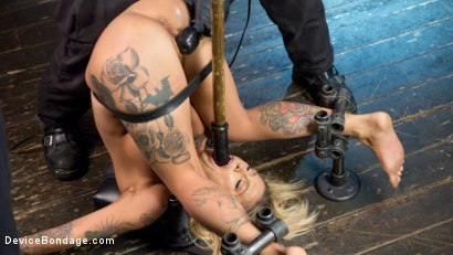 Photo number 3 from Super Sexy ALT Pain Slut Captured in Brutal Bondage and Tormented shot for Device Bondage on Kink.com. Featuring Kleio Valentien and The Pope in hardcore BDSM & Fetish porn.