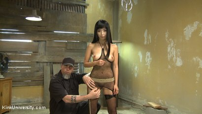 Photo number 16 from Suspension Bondage for Sex shot for Kink University on Kink.com. Featuring Marica Hase, Danarama and The Pope in hardcore BDSM & Fetish porn.
