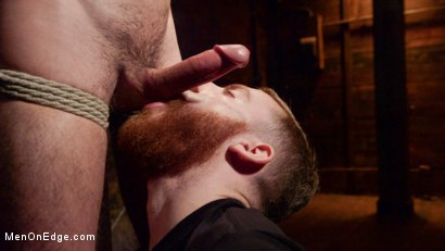 Photo number 1 from Ripped Stud Caught in Sebastian's Web and Edged Relentlessly shot for Men On Edge on Kink.com. Featuring Scott DeMarco in hardcore BDSM & Fetish porn.