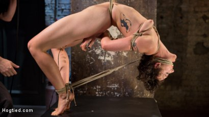 Photo number 5 from First Timer in Extreme Bondage with Brutal Tormented, and Made to Cum shot for Hogtied on Kink.com. Featuring Lilith Luxe and The Pope in hardcore BDSM & Fetish porn.