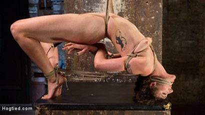 Photo number 7 from First Timer in Extreme Bondage with Brutal Tormented, and Made to Cum shot for Hogtied on Kink.com. Featuring Lilith Luxe and The Pope in hardcore BDSM & Fetish porn.