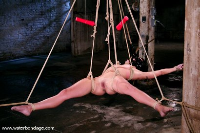 Photo number 8 from Wenona shot for Water Bondage on Kink.com. Featuring Wenona in hardcore BDSM & Fetish porn.