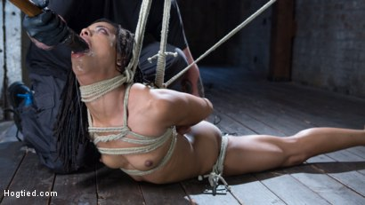 Photo number 1 from All Natural Ebony Newcomer in Brutal Bondage and Suffering Like a Pro! shot for Hogtied on Kink.com. Featuring Kira Noir and The Pope in hardcore BDSM & Fetish porn.
