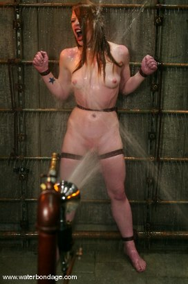 Photo number 10 from Madison Young shot for Water Bondage on Kink.com. Featuring Madison Young in hardcore BDSM & Fetish porn.