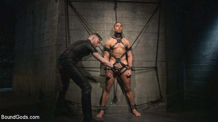 sex slave personals