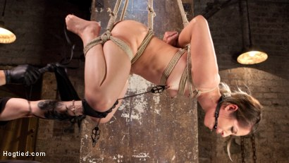 Photo number 1 from Cute LA Porn Slut in Brutal Bondage and Abused then Made to Cum shot for Hogtied on Kink.com. Featuring Goldie Rush and The Pope in hardcore BDSM & Fetish porn.