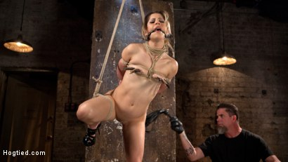 Photo number 5 from Cute LA Porn Slut in Brutal Bondage and Abused then Made to Cum shot for Hogtied on Kink.com. Featuring Goldie Rush and The Pope in hardcore BDSM & Fetish porn.