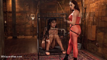 Photo number 15 from Chanel Preston's Hot Little Toy! shot for Whipped Ass on Kink.com. Featuring Chanel Preston and Marica Hase in hardcore BDSM & Fetish porn.