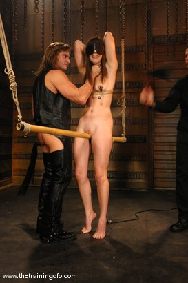 Photo number 2 from Training Report, Day Three of Four shot for The Training Of O on Kink.com. Featuring Bobbi Starr and Evan Stone in hardcore BDSM & Fetish porn.