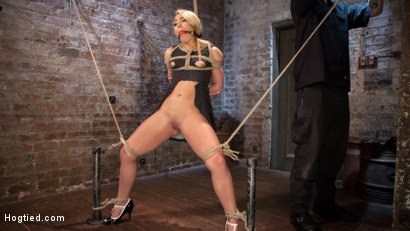 Photo number 2 from AJ Applegate Submits To Grueling Bondage and Torment!!! shot for Hogtied on Kink.com. Featuring AJ Applegate and The Pope in hardcore BDSM & Fetish porn.