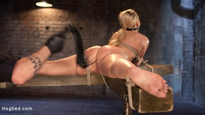 Photo number 4 from AJ Applegate Submits To Grueling Bondage and Torment!!! shot for Hogtied on Kink.com. Featuring AJ Applegate and The Pope in hardcore BDSM & Fetish porn.