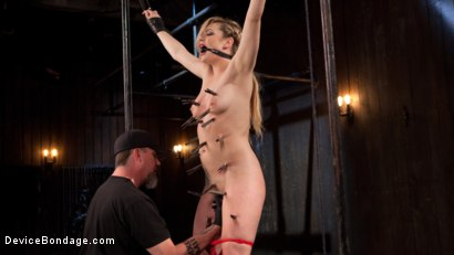 Photo number 4 from Sexy Blonde Whore is Brutalized in Grueling Bondage shot for Device Bondage on Kink.com. Featuring Dahlia Sky and The Pope in hardcore BDSM & Fetish porn.