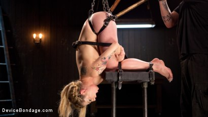 Photo number 8 from Sexy Blonde Whore is Brutalized in Grueling Bondage shot for Device Bondage on Kink.com. Featuring Dahlia Sky and The Pope in hardcore BDSM & Fetish porn.