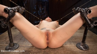 Photo number 9 from Sexy Blonde Whore is Brutalized in Grueling Bondage shot for Device Bondage on Kink.com. Featuring Dahlia Sky and The Pope in hardcore BDSM & Fetish porn.