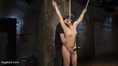 Photo number 16 from Feisty Latina is Captured in Grueling Bondage, Tormented, and Ass Fucked shot for Hogtied on Kink.com. Featuring Kristina Rose and The Pope in hardcore BDSM & Fetish porn.