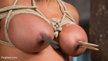 Photo number 12 from Big Tits Bound, Tormented Body, and Pussy and Face Fucked shot for Hogtied on Kink.com. Featuring Maxine X in hardcore BDSM & Fetish porn.