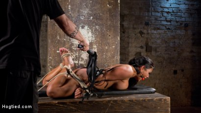 Photo number 15 from Big Tits Bound, Tormented Body, and Pussy and Face Fucked shot for Hogtied on Kink.com. Featuring Maxine X in hardcore BDSM & Fetish porn.