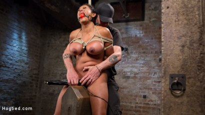 Photo number 11 from Big Tits Bound, Tormented Body, and Pussy and Face Fucked shot for Hogtied on Kink.com. Featuring Maxine X in hardcore BDSM & Fetish porn.