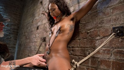 Photo number 14 from Ebony Bondage Princess Captured and Tormented!! shot for Hogtied on Kink.com. Featuring Chanell Heart and The Pope in hardcore BDSM & Fetish porn.
