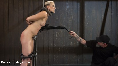 Photo number 4 from Teacher's Pet shot for Device Bondage on Kink.com. Featuring Dylan Ryan and The Pope in hardcore BDSM & Fetish porn.