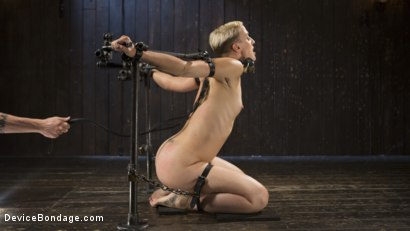 Photo number 6 from Teacher's Pet shot for Device Bondage on Kink.com. Featuring Dylan Ryan and The Pope in hardcore BDSM & Fetish porn.