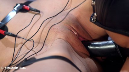 Photo number 7 from Beautiful slut shocked and anally strap-on fucked! shot for Electro Sluts on Kink.com. Featuring Katharine Cane and Nikki Darling in hardcore BDSM & Fetish porn.