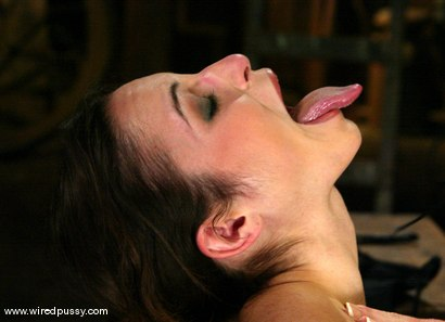 Photo number 2 from Melissa Lauren and Amber Rayne shot for Wired Pussy on Kink.com. Featuring Melissa Lauren and Amber Rayne in hardcore BDSM & Fetish porn.
