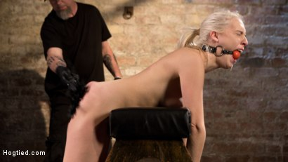 Photo number 4 from Blonde Rope Slut is Victimized and Made to Squirt Uncontrollably!! shot for Hogtied on Kink.com. Featuring Cadence Lux and The Pope in hardcore BDSM & Fetish porn.