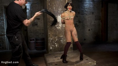 Photo number 14 from 19 Year Old Slut in Devastating Bondage and Tormented!! shot for Hogtied on Kink.com. Featuring Gina Valentina and The Pope in hardcore BDSM & Fetish porn.