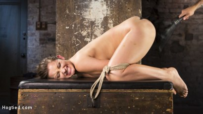 Photo number 15 from Dani Daniels Submits in Brutal Bondage shot for Hogtied on Kink.com. Featuring Dani Daniels and The Pope in hardcore BDSM & Fetish porn.