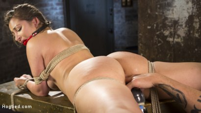 Photo number 8 from Dani Daniels Submits in Brutal Bondage shot for Hogtied on Kink.com. Featuring Dani Daniels and The Pope in hardcore BDSM & Fetish porn.