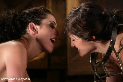Photo number 6 from Stacey Stax and Princess Donna Dolore shot for Wired Pussy on Kink.com. Featuring Stacey Stax and Princess Donna Dolore in hardcore BDSM & Fetish porn.