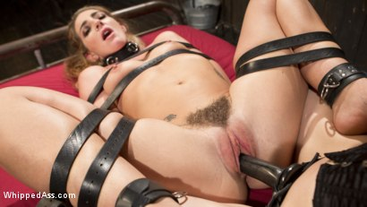 Photo number 10 from Mistress Chanel Preston's Squirting Submissive Lesbian Sex Slave shot for Whipped Ass on Kink.com. Featuring Chanel Preston and Savannah Fox in hardcore BDSM & Fetish porn.