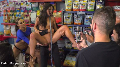 Photo number 14 from Slutty Pet Begs for a Bone!!! - Part 2 shot for Public Disgrace on Kink.com. Featuring Steve Holmes, Alexa Tomas and Tina Kay in hardcore BDSM & Fetish porn.