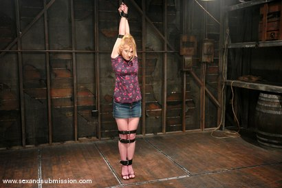 Photo number 1 from Tawni Ryden shot for Sex And Submission on Kink.com. Featuring Tawni Ryden and Brandon Iron in hardcore BDSM & Fetish porn.