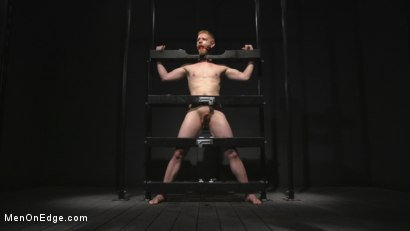 Uncut Stud Edged Beyond His Limit in Stocks